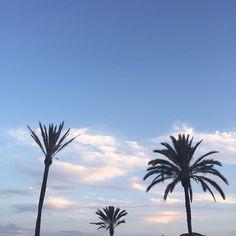Breathe in the Spanish summer air! #ecru #travel #palms #endless #inspiration #summer #love