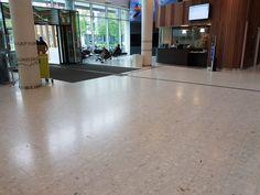 Vi har levert og utført: Terrazzofliser (HT Calacatta) på gulv i fellesarealer og elementer i trapper  Omfang: 500m2  Tidsperiode: 2013 Hardwood Floors, Flooring, Trondheim, Terrazzo, Wood Floor Tiles, Wood Flooring, Floor