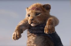 """Disney released new photos of """"The Lion King"""" cast, including Beyoncé and Donald Glover, in front of a simple black background as they stare down their computer-animated characters. Lion King Remake, Watch The Lion King, Lion King 2, Lion King Movie, Simba Lion, John Oliver, Donald Glover, Disney Live, Disney S"""