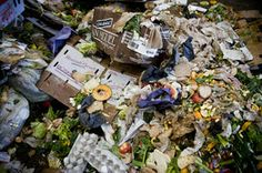 Portland Puts New Twist on Trash Pickup City Creates Buzz as It Cuts Collection To Every 2 Weeks, Stresses Composting