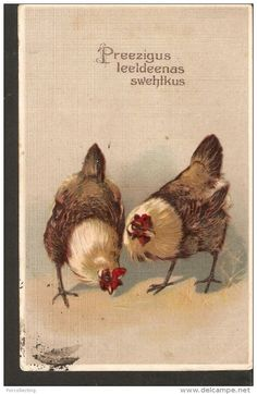 b1. EASTER antique embossed postcard - HEN hens chicken illustration passed post in 1908 Russian Stamp print Germany