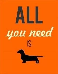 All you need is ...
