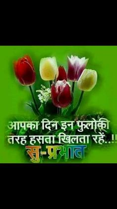 Beautiful Hindi Good Morning whatsapp video - https://funnytube.in/beautiful-hindi-good-morning-whatsapp-video/