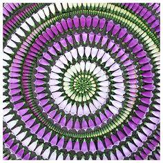 Foxglove petals