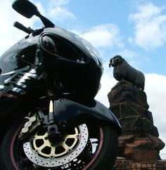 The Moffat Ram, one of the main local biker meeting spots around here. Biking, Trip Planning, Scotland, Wanderlust, Explore, Bicycling, Motorcycles, Cycling, Exploring