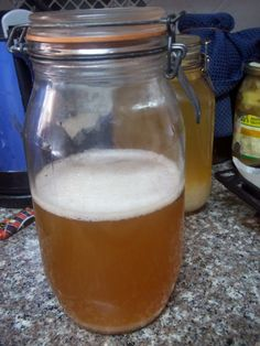 Probiotic filled Homemade Water Kefir Recipe
