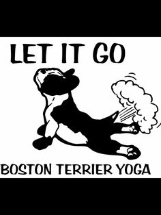 If you own a Boston, you understand!