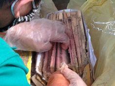Dịch vụ diệt mối tại Tây Ninh của công ty TNHH Diệt Mối Thành Công được xem là chuyên gia trong lĩnh vực kiểm soát và tiệu diệt côn trùng gây hại. Vì