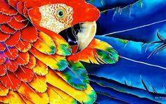 cuadro loros pintados - Buscar con Google