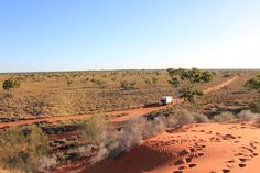Near Wellford NP western Queensland