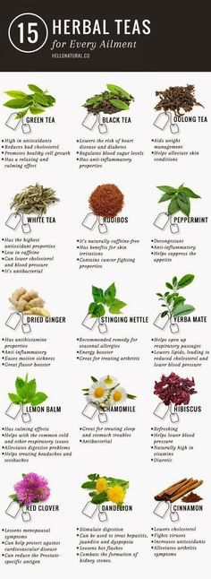 Green tea is not the only tea with promising (and according to many sources, PROVEN) health benefits. This infographic illustrates and describes 14 other healing herbal teas. http://http://www.detoxmetea.com www.detoxmetea.co...