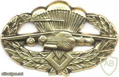 UKRAINE ''Desant'' parachutist badge Paratrooper, Special Forces, Armed Forces, Patches, Wings, Military, War, Beret, Badges