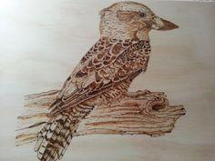 Kookaburra.  Sue Walters design.