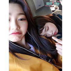 Yoojung & Mina (gugudan) Hoop Earrings, Asian, Kpop, Cute, Style, Swag, Kawaii, Outfits, Earrings