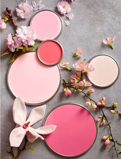 Petal-inspired pink paint palette by Better Homes & Gardens. Coral Pink, Pink Color, Pink Paint Colors, Pink And Gray, In The Pink, Pink Love, Blush Pink, Hot Pink, Gray Color