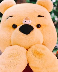 Pooh bear with a Christopher Robin TsumTsum perched atop his nose. Disney Dream, Disney Love, Disney Magic, Disney Art, Disney Pixar, Walt Disney, Disney Stuff, Disney Characters, Dreamworks