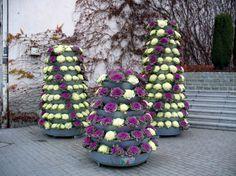 flower towers terra autumn version with an ornamental cale Flower Tower, Petunias, Towers, Ornaments, Outdoor Decor, Group, Autumn, Park, Home Decor