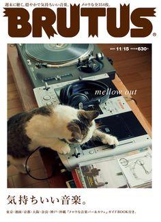 EPX studio.clip Typography Magazine, Magazine Japan, Quirky Art, Lots Of Cats, Album Book, Cat Design, Graphic Design, Design Reference, Advertising Design