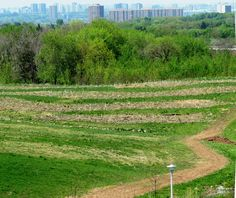 Looking west from Downsview Park's NE hilltop