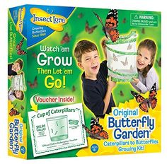 Insect Lore Live Butterfly Garden, http://www.amazon.com/dp/B00000ISC5/ref=cm_sw_r_pi_awdm_ox6ZwbYS0FMWA