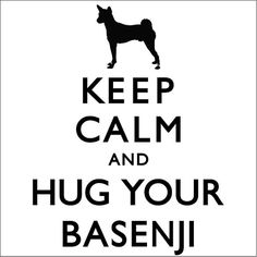 Keep Calm And Hug Your Basenji Ladies Tshirt by TheDogEmpire