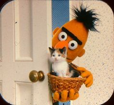 Jim Henson - The Muppet Master Sesame Street Muppets, Bert & Ernie, Fraggle Rock, Kermit The Frog, Jim Henson, Mood Pics, Reaction Pictures, Haha Funny, Puppets