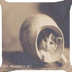 Cushion cover throw pillow case 18 inch retro vintage cat... https://www.amazon.com/dp/B01G8V19H2/ref=cm_sw_r_pi_dp_x_kUF7ybA8TK2BW