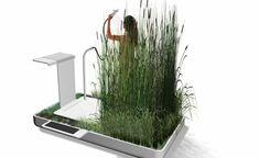 Habitação Saudável: Eco-chuveiro vem equipado com plantas que filtram ...