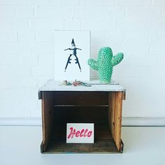 One cheeky 'Gun Gnome' print hanging out with the cacti.