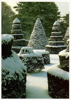 The topiary garden; beautiful all year.