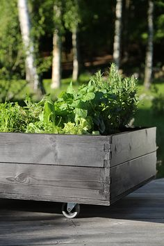 Pallkrage på hjul / DIY miniature garden on wheels / https://Hasselforsgarden.se… Wooden Terrace, Garden Boxes, Garden Ideas, Garden Planters, Raised Herb Garden, Spring Garden, Terrace Garden, Plantation, Edible Garden