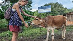 10 beautiful reasons to visit Nicaragua - CNN.com Cows provide milk for the rich, crumbly cheese called cuejada that accompanies spiced beans and rice known as gallopinto, freshly pressed corn tortillas, eggs and fried plantains that are eaten for most meals. There's always a dish of salsa picante -- fresh vinegary salsa made with onions and chilies.