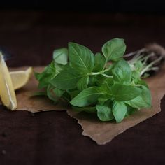Lemon basil is a hybrid between basil and African basil. It is primarily grown in northeastern Africa and southern Asia. Lemon Basil, Fresh Basil, Fresh Herbs, Basil Recipes, Sausage Soup, Egg Dish, Corn Chowder