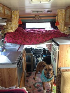 1987 Toyota Dolphin tricked out 1970s style - bed & dog