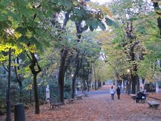 Villa Borghese Rome--- tom and I felt like we had arrived when we were sitting on a park bench and a woman came up to us and started speaking Italian.