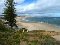 Peter and Vicki's Travel Blog: Lest We Forget! Anzac Day journey - McLaren Vale, Moana Beach, Maslin Beach, Seaforth Beach, Port Noarlunga, Southport Beach and Christies Beach. • Adelaide's beaches