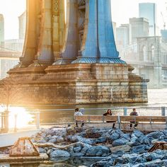 Brooklyn Bridge Park (Photo: @camilleschaer)
