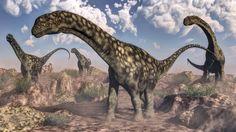 Spätere Vertreter der Gruppe wie Argentinosaurus unterschieden sich deutlich...
