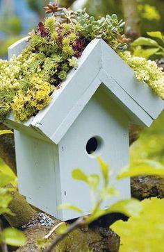 This bird house planter does double duty - My Garden Window Garden Art, Garden Design, Home And Garden, Bird Boxes, Garden Projects, Garden Inspiration, Container Gardening, Container Houses, Outdoor Gardens