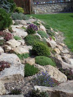 Steingarten 15 Amazing Rock Garden Design Ideas Tools Every Do-It-Yourself Landscaper Needs Article Beautiful Gardens, Backyard Garden, Rockery Garden, Backyard Landscaping, Landscape Design, Outdoor Gardens, Garden Design, Rock Garden Landscaping, Rock Garden Design