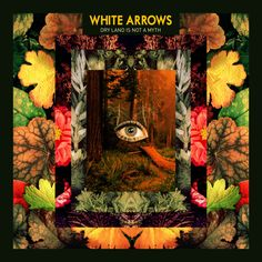 WHITE ARROWS - Leif Podhajsky