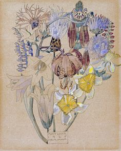 Mont Louis - Flower Study, 1925 by Charles Rennie Mackintosh. King & McGaw has an extensive collection of art prints by established and emerging artists, which are all framed by hand in the UK. Art And Illustration, Botanical Drawings, Botanical Art, Fleurs Art Nouveau, Illustration Botanique, Glasgow School Of Art, Inspiration Art, Arts And Crafts Movement, Art Design