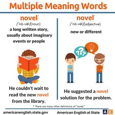 Multiple Meaning Words: Novel