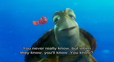 Stories are ready when... Well, like the turtle says: when they know, you'll know.