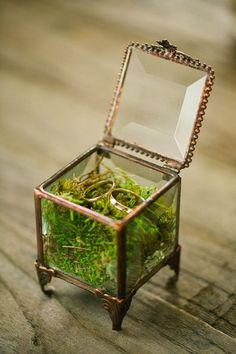 glass and copper ring box filled with moss