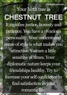 Your Birth Tree: Chestnut Tree. Understated sense of style makes you attractive= sweatpants are good! lol