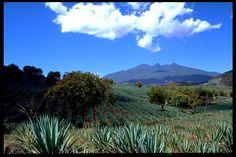Volcán de Tequila. México