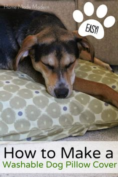 Home Made Modern: How to Make a Dog Bed (And Win Custom Fabric From Zazzle!)