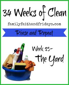 Family, Faith, and Fridays: 34 Weeks of Clean-Rinse and Repeat: Week 25- The Y...
