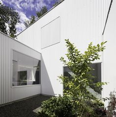 Gallery - Princeton House / LEVENBETTS - 16
